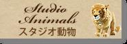 スタジオ動物